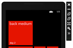 mediumexampleback